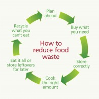 food_cycle_diagram