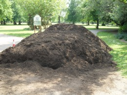 Pile of WL compost