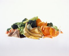 print0132_-_Small_pile_of_food_waste_-_Print_Version__300ppi